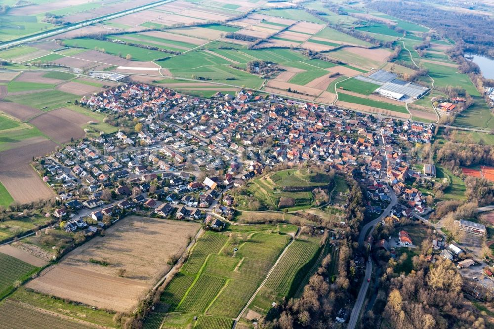 Aerial image Teningen - Agricultural land and field borders surround the settlement area of the village in the district Nimburg in Teningen in the state Baden-Wurttemberg, Germany