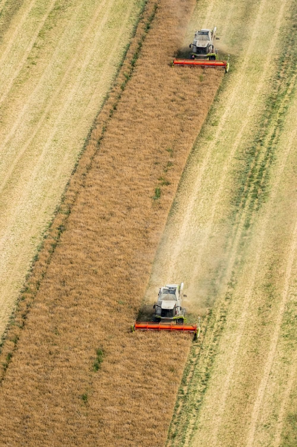 Aerial photograph Vipperow - Harvest use of heavy