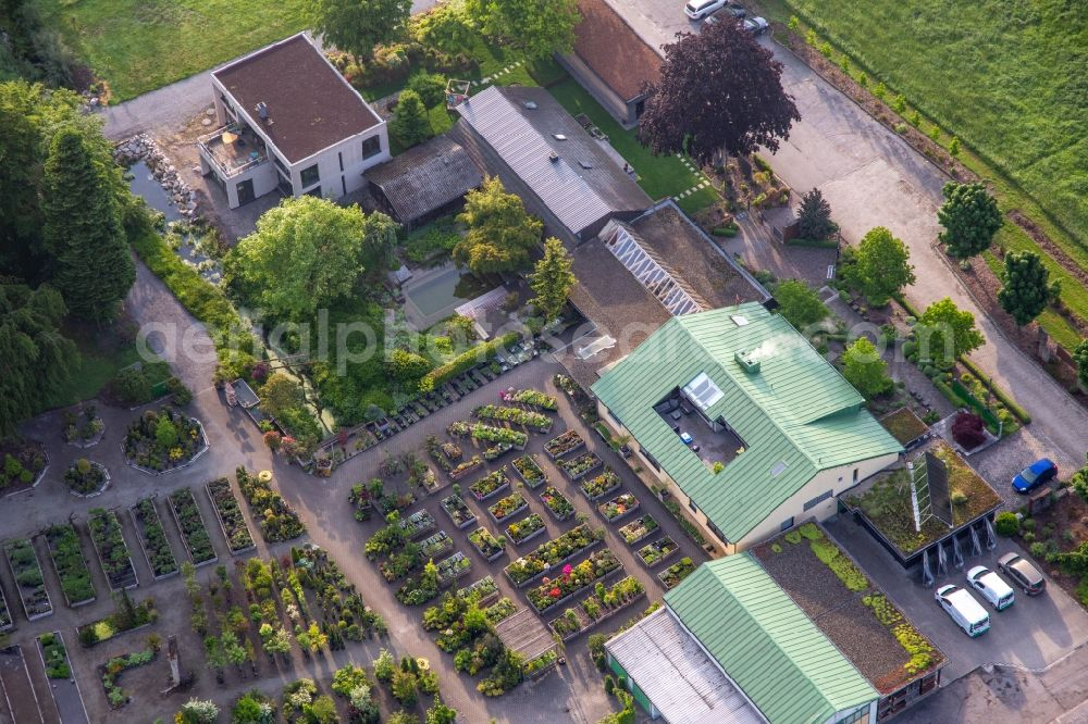 Berg (Pfalz) from the bird's eye view: Building of Store plant market Bienwald-Nursery Greentec GmbH in Berg (Pfalz) in the state Rhineland-Palatinate, Germany