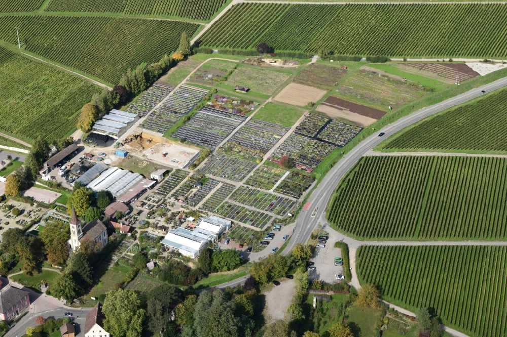 Aerial photograph Sulzburg - Buildings, beds and plants at the grounds of the perennial nursery Graefin von Zeppelin in the district Laufen in Sulzburg in the state Baden-Wurttemberg, Germany