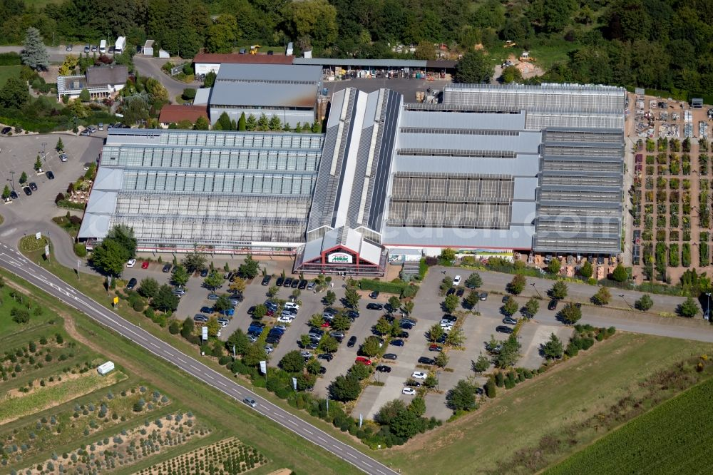 Aerial photograph Lauffen am Neckar - Building of Store plant market of Pflanzen Mauk Gartencenter GmbH at Landturm in Lauffen am Neckar in the state Baden-Wurttemberg, Germany