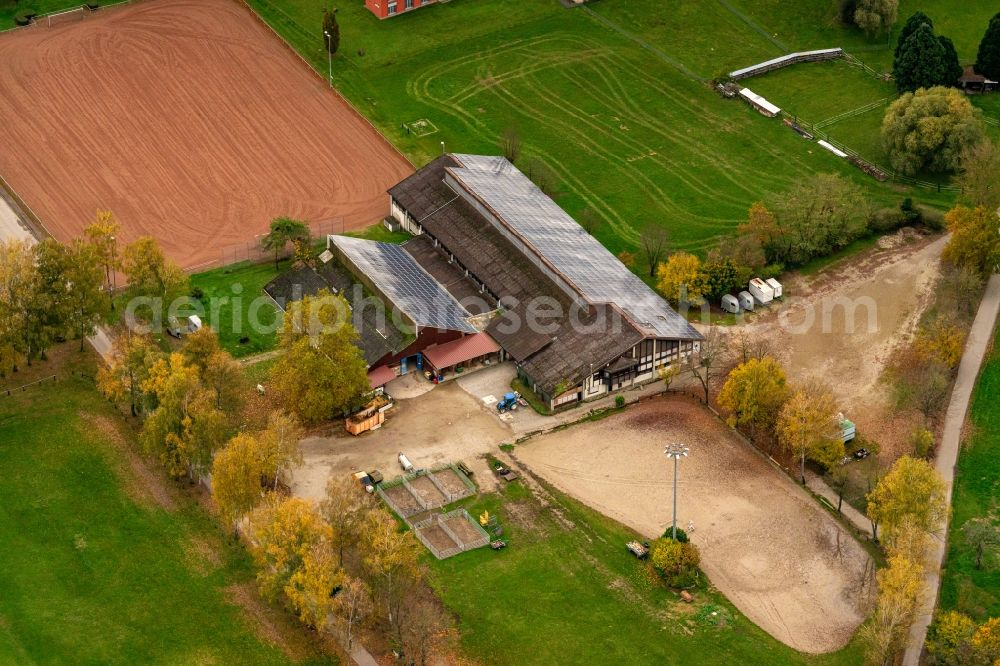 Meißenheim from the bird's eye view: Homestead of a farm Reit- Renn-und Fahrverein Meissenheim e.V. in Meissenheim in the state Baden-Wurttemberg, Germany.