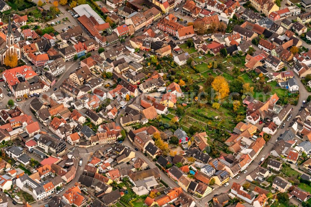 Aerial photograph Ihringen - Autumnal discolored vegetation view town View of the streets and houses of the residential areas in Ihringen in the state Baden-Wurttemberg, Germany