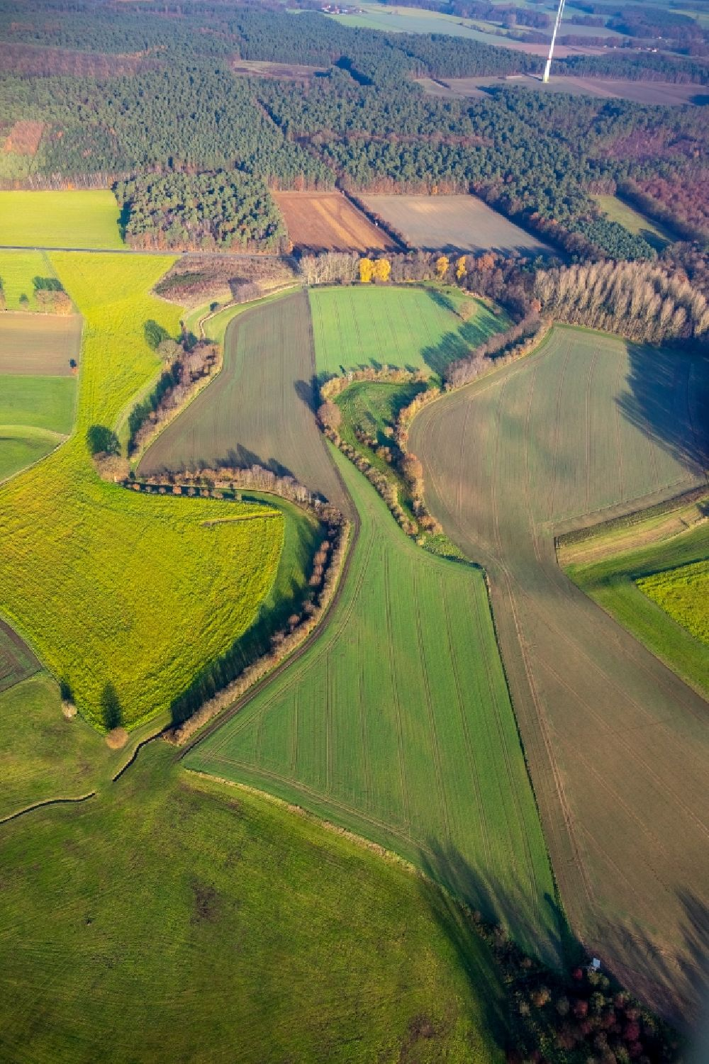 Aerial image Haltern am See - Grassland structures of a meadow and field landscape in the lowland on river shore of Lippe in Haltern am See in the state North Rhine-Westphalia, Germany.