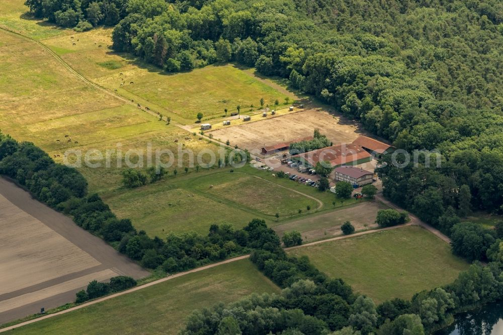 Haßloch from the bird's eye view: Building of stables on Rehbach in Hassloch in the state Rhineland-Palatinate, Germany