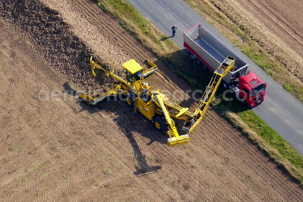 Friedland from above - Beet harvest in Friedland in the state Lower Saxony, Germany