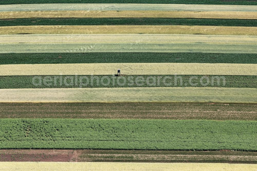 Schwechat from above - Structures on agricultural fields in Schwechat in Lower Austria, Austria