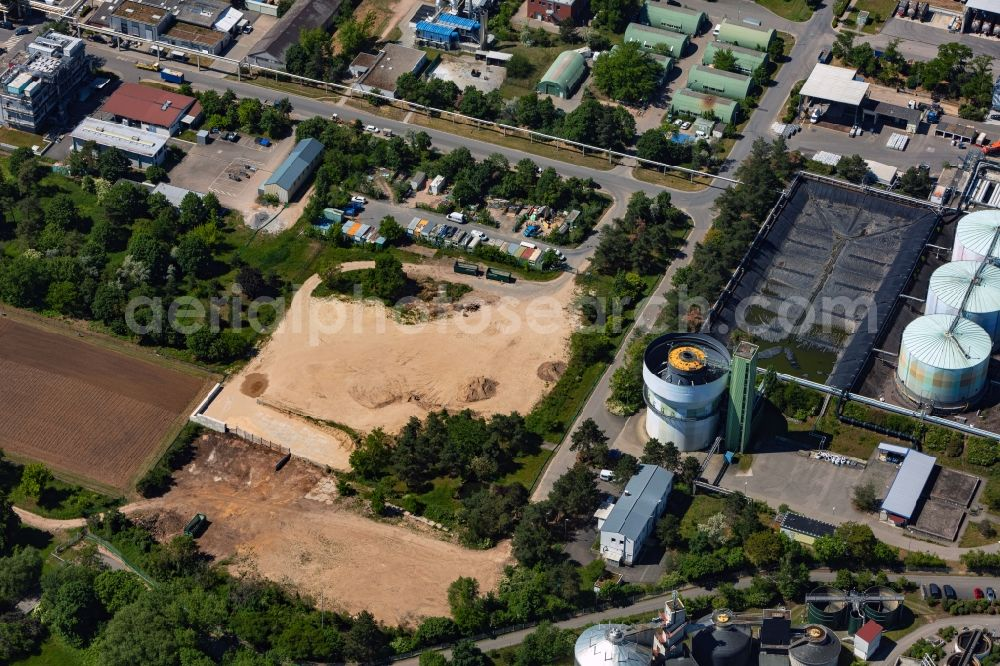 Ingelheim am Rhein from the bird's eye view: Building and production halls on the premises of the chemical manufacturers Boehringer Ingelheim Pharma GmbH & Co. KG in Ingelheim am Rhein in the state Rhineland-Palatinate, Germany