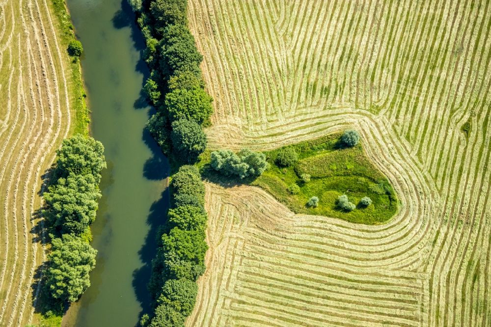 Dolberg from the bird's eye view: Grassland structures of a meadow and field landscape in the lowland of Lippe river in Dolberg in the state North Rhine-Westphalia, Germany
