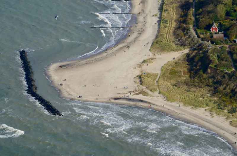 Beach landscape along the of Baltic Sea in the district Althagen in Ahrenshoop in the state Mecklenburg - Western Pomerania, Germany