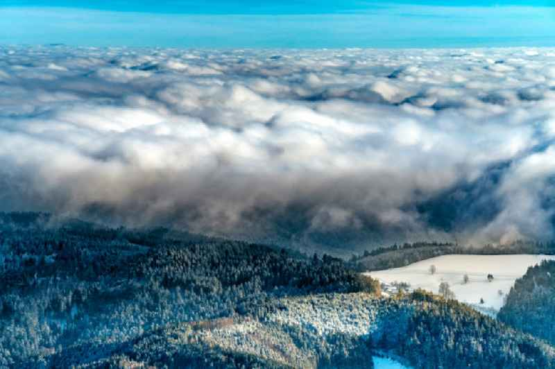 Wintry snowy weather with layered fog cover in Schwarzwald in Baiersbronn in the state Baden-Wurttemberg, Germany