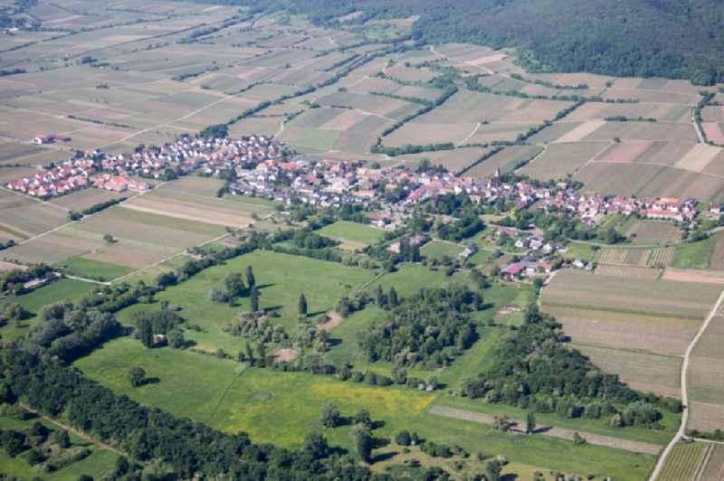 Village - view on the edge of wine yards  in Forst an der Weinstrasse in the state Rhineland-Palatinate, Germany