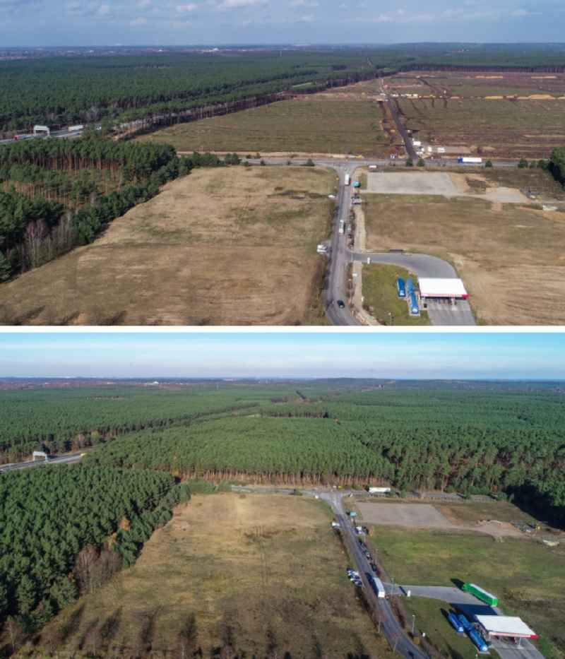 Bald area of a cleared forest on premise of Tesla- factoryes in Gruenheide (Mark) in the state Brandenburg, Germany