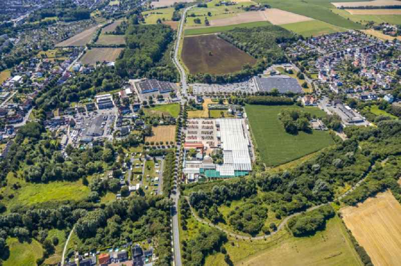 Building of Store plant market garden centre Bintig GmbH in Hamm in the state North Rhine-Westphalia