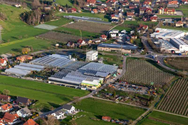 Glass roof surfaces in the greenhouse rows for Floriculture in the district Bollenbach in Haslach im Kinzigtal in the state Baden-Wuerttemberg, Germany