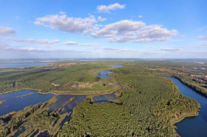 Shore areas of flooded former lignite opencast mine and renaturation lake ' Erikasee ' in Lauta in the state Saxony, Germany