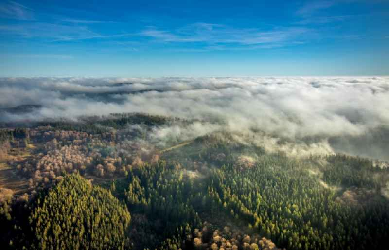 Weather with layered fog cover over forest areas in Lengenbeck in the state North Rhine-Westphalia, Germany