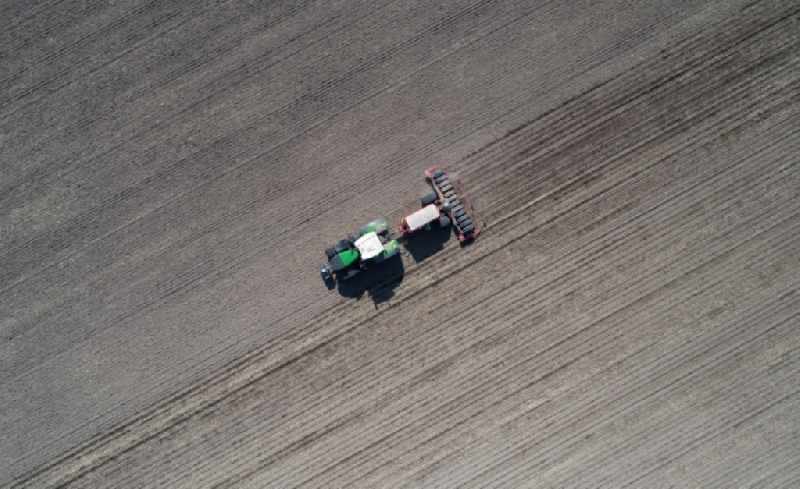 Cultivation of a field using a tractor with agricultural machine for sowing with corn seeds in Mallnow in the state Brandenburg, Germany