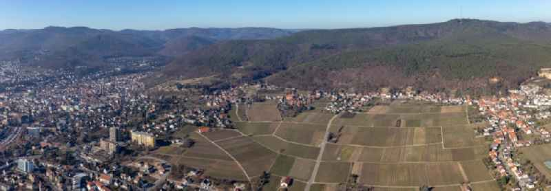 Panoramic perspective fields of wine cultivation landscape in the district Haardt in Neustadt an der Weinstrasse in the state Rhineland-Palatinate, Germany