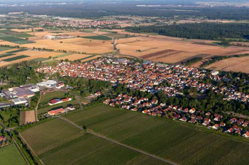 Village view on the edge of agricultural fields and land in Niederhochstadt in the state Rhineland-Palatinate, Germany