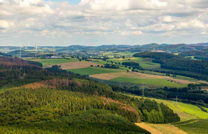 Forest areas with meadows and fields in Olsberg in the state North Rhine-Westphalia, Germany