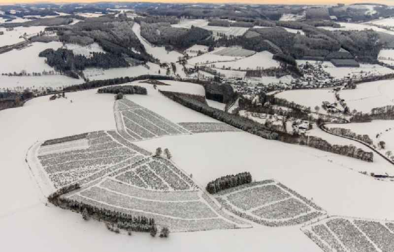 Wintry snowy agricultural fields with adjacent forest and forest areas in the district Elpe in Olsberg at Sauerland in the state North Rhine-Westphalia, Germany
