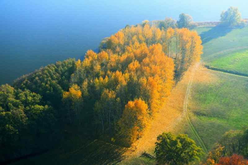 Autumn colored forests on the shores of Lake Lieps in Penzlin in the state Mecklenburg - Western Pomerania, Germany.