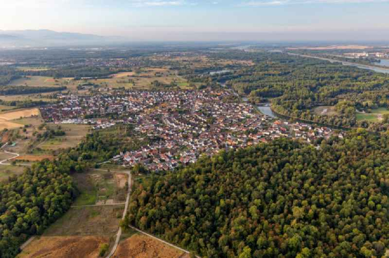 Village on the banks of the area Altrhein - river course in Plittersdorf in the state Baden-Wuerttemberg, Germany