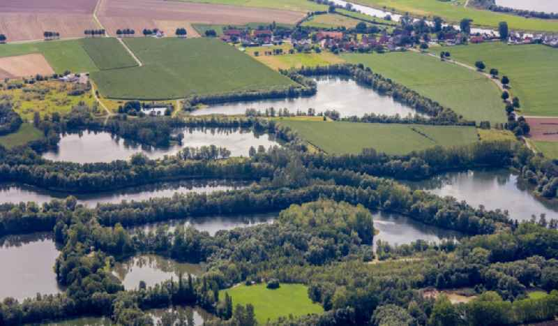 Shore areas of the ponds for fish farming Grosswieden in Rinteln in the state Lower Saxony, Germany