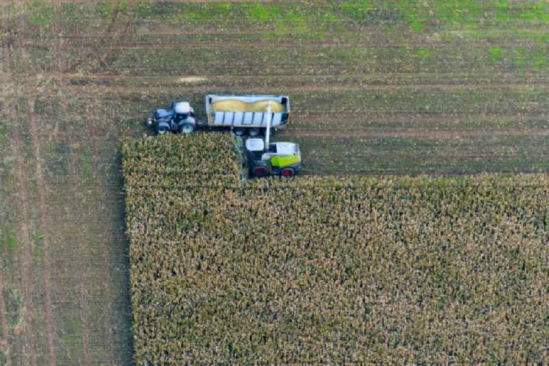 Harvest use of heavy agricultural machinery - combine harvesters and harvesting vehicles on agricultural fields in Rotzendorf in the state Bavaria, Germany