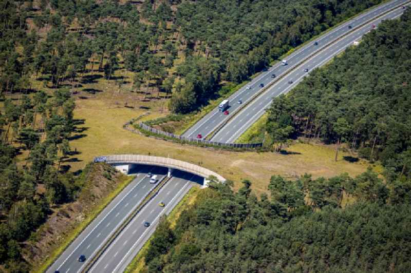 Highway bridge structure applied as a wildlife crossing bridge Wild - Wild swap the BAB A ueber of A31 in Schermbeck in the state North Rhine-Westphalia, Germany