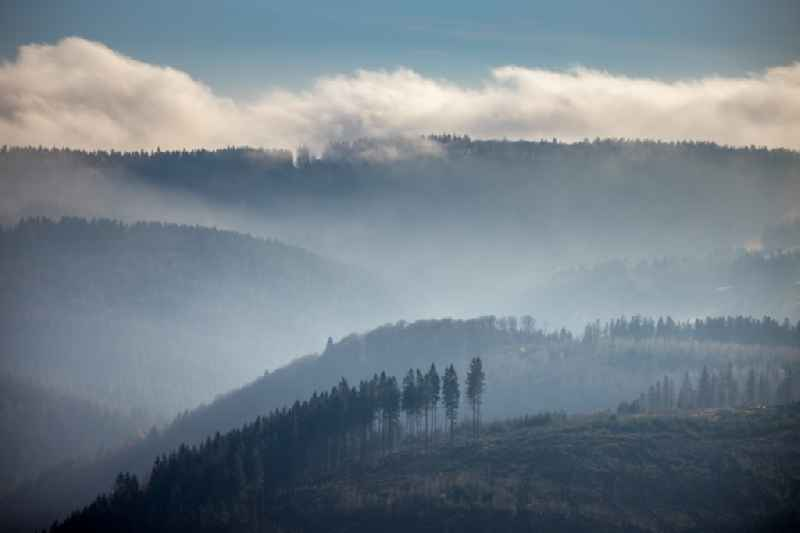 Weather with layered fog cover over a forest area in Schmallenberg in the state North Rhine-Westphalia, Germany