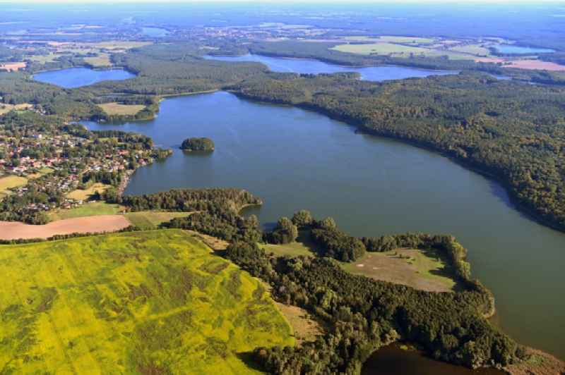 Riparian areas on the lake area of ' Schwarzer See ' at a forest area in Schwarz in the state Mecklenburg - Western Pomerania, Germany