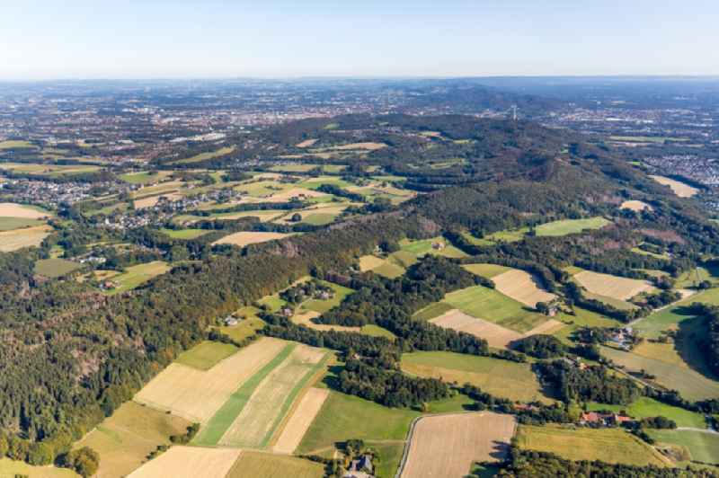 Forest areas in on the edge of agricultural fields in the Krebsbach- and Horstbachtal in the eastern Teutoburg Forest in Steinhagen in the state North Rhine-Westphalia, Germany