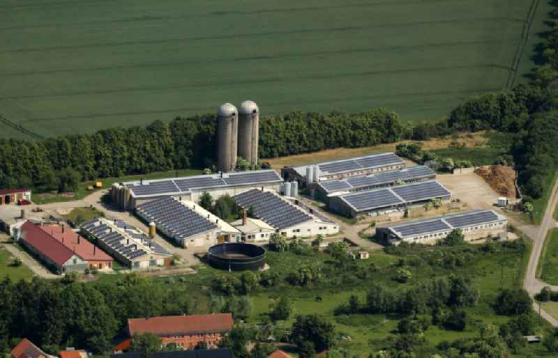 Dairy plant and animal breeding stables with cows and Schweinezucht between Hauptstrasse and Blankenburger Weg in Sundhausen in the state Thuringia, Germany