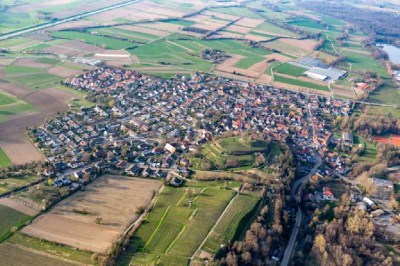 Agricultural land and field borders surround the settlement area of the village in the district Nimburg in Teningen in the state Baden-Wurttemberg, Germany