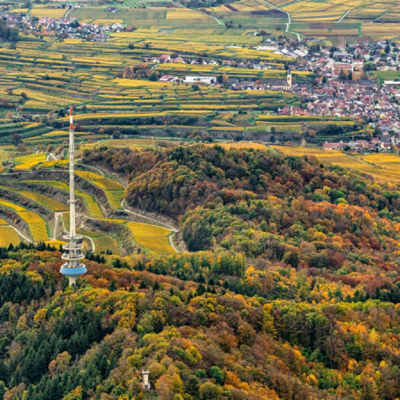 Autumnal discolored vegetation view funkturm and transmission system ' Fernmeldeturm Vogtsburg-Totenkopf ' as basic network transmitter in Ihringen in the state Baden-Wurttemberg, Germany