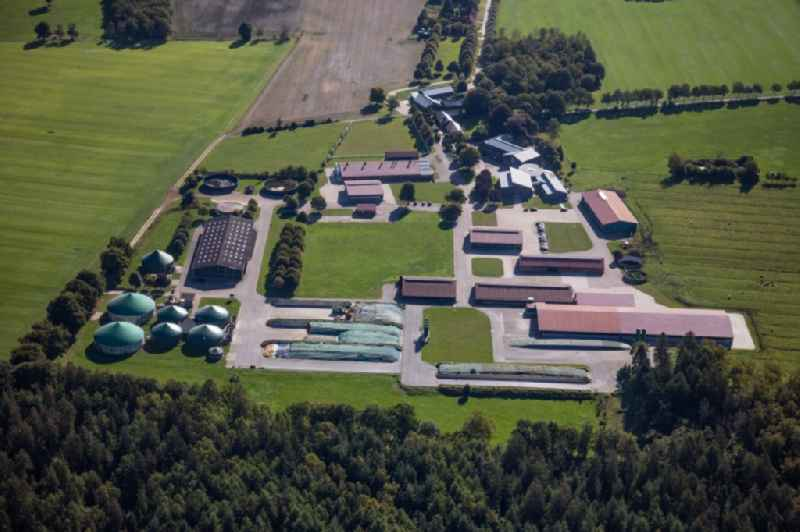 Dairy plant and animal breeding stables with cows Gut Huelsenberg GmbH on Wiesenweg in Wahlstedt in the state Schleswig-Holstein, Germany