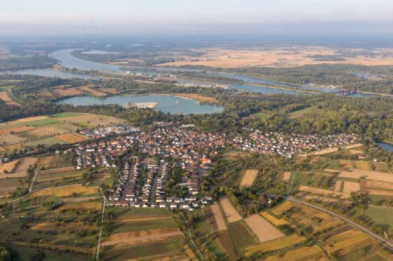 Village on the river bank areas of the Rhine river in Wintersdorf in the state Baden-Wuerttemberg, Germany