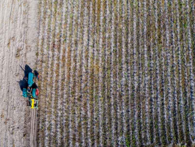 Vertical aerial view from the satellite perspective of the plowing and shifting the earth by a tractor with plow on agricultural fields in Klein Trebbow in the state Mecklenburg - Western Pomerania, Germany