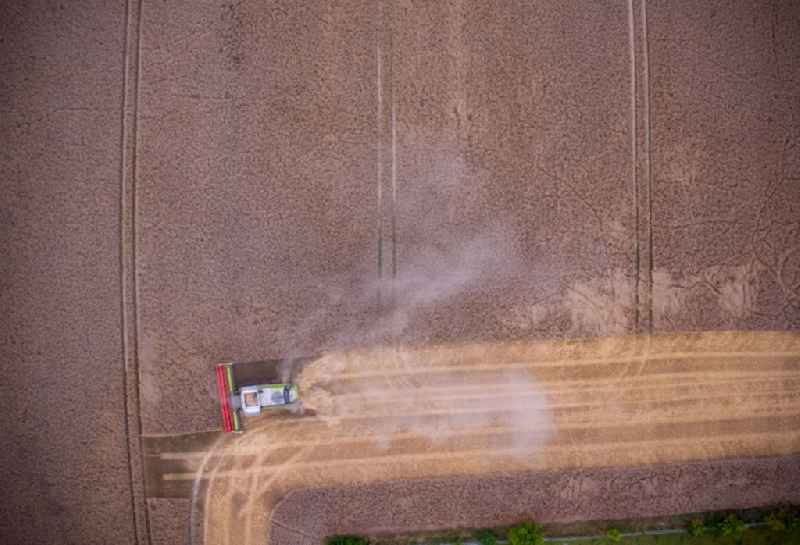 Vertical aerial view from the satellite perspective of the harvest use of heavy agricultural machinery - combine harvesters and harvesting vehicles on agricultural fields for harvesting wheat in Luetzow in the state Mecklenburg - Western Pomerania, Germany
