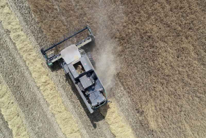 Vertical aerial view from the satellite perspective of the harvest use of heavy agricultural machinery - combine harvesters and harvesting vehicles on agricultural fields in Mallnow in the state Brandenburg, Germany