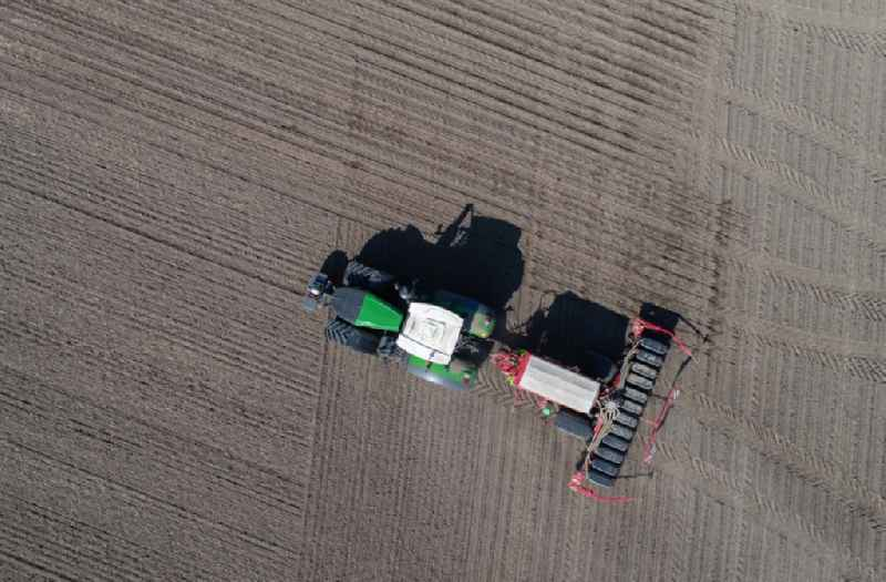 Vertical aerial view from the satellite perspective of the cultivation of a field using a tractor with agricultural machine for sowing with corn seeds in Mallnow in the state Brandenburg, Germany