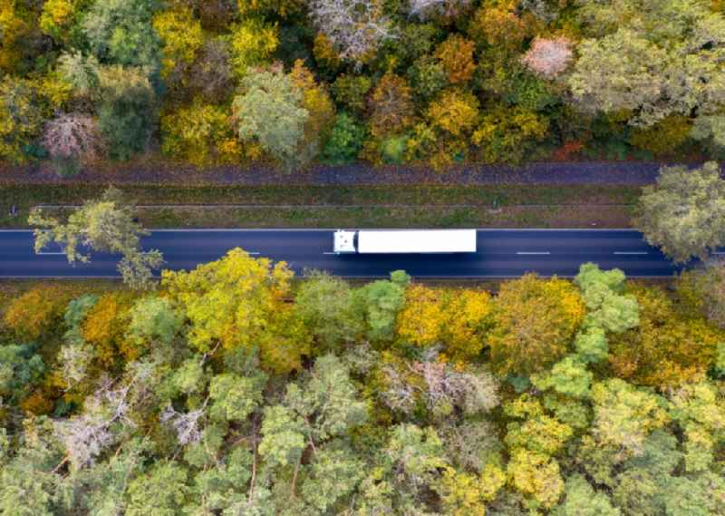 Vertical aerial view from the satellite perspective of the country road in the course of the forest area in Nudow in the state Brandenburg, Germany
